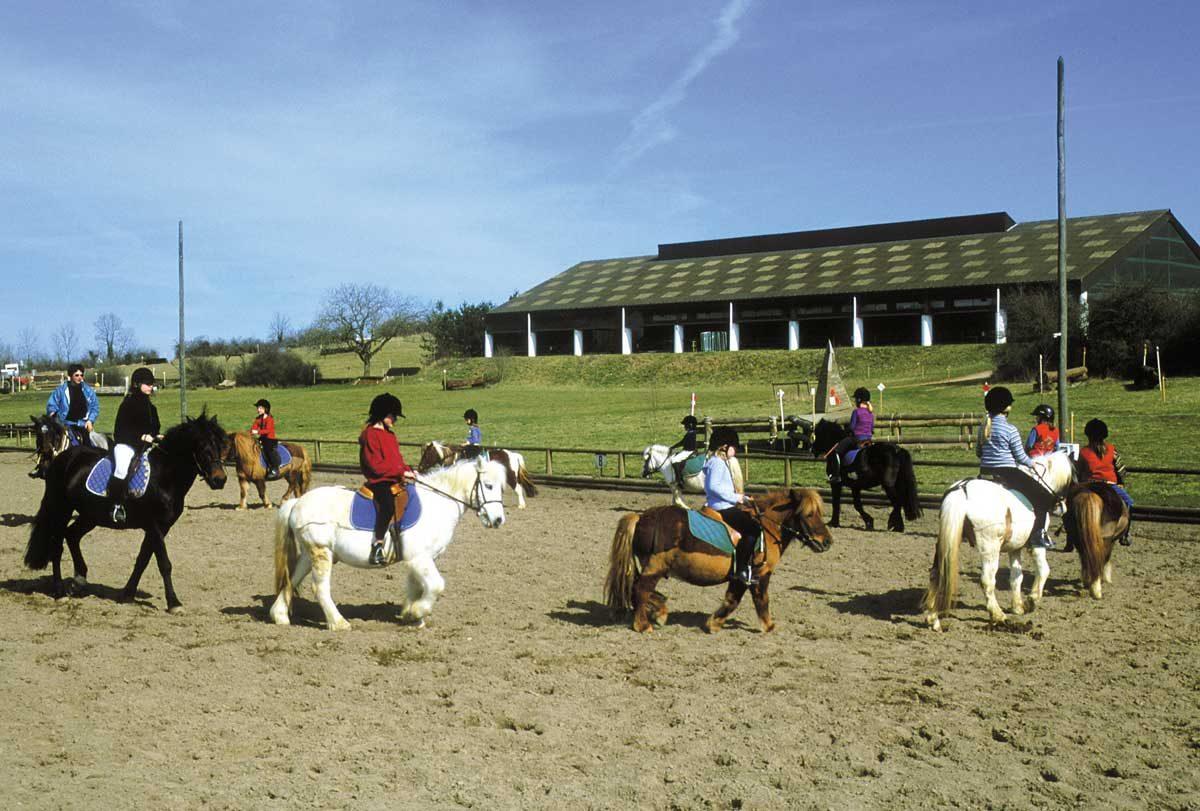 Carriere ouverte cours d'equitation pour enfant